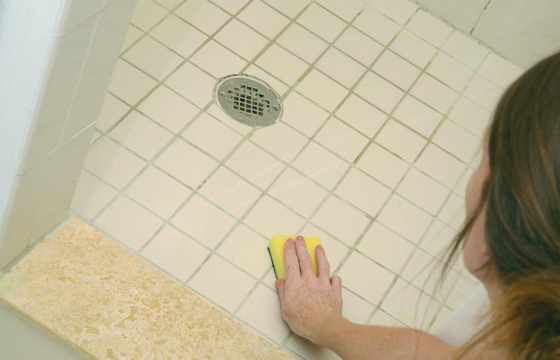 Bathroom Mold how to remove bathroom mold in providence & cranston | almeida